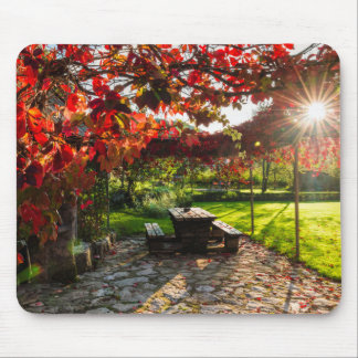 Sun through autumn leaves, Croatia Mouse Pad