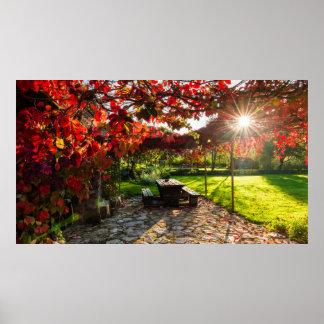 Sun through autumn leaves, Croatia Poster