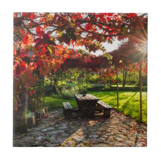 Sun through autumn leaves, Croatia Tile