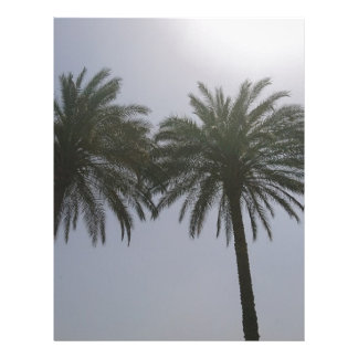 Sun Trees Egypt. Letterhead