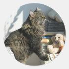 Sun Worshipping Cat Sticker