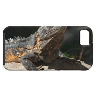 Sun-Worshipping Iguana Case For The iPhone 5