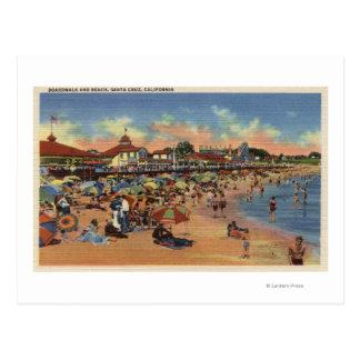 Sunbathers & Swimmers on Boardwalk & Beach Postcard
