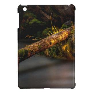 Sunbathing iPad Mini Cases