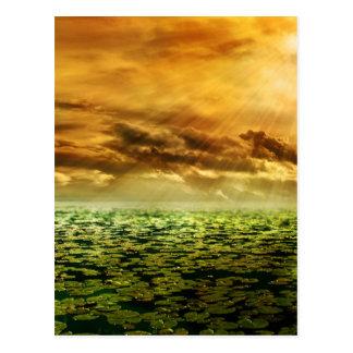 Sunbeam Afterglow Postcard