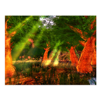Sunbeams of Harmony Poetry Postcard