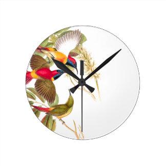 Sunbird Birds Wildlife Animals Botanical Clocks