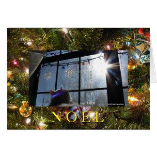 Sunburst Cat 2/ Noel Card