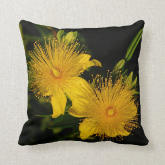 Sunburst Flowers Pillow