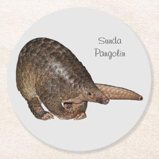 Sunda Pangolin Coaster