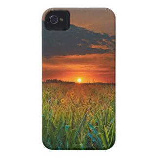 Sundown Case-Mate iPhone 4 Case