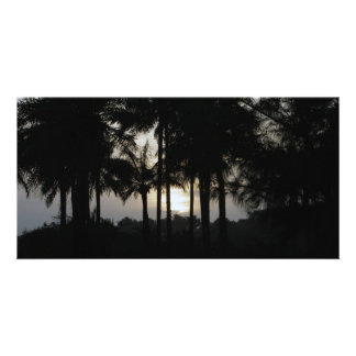 Sundown in a palm forest personalized photo card