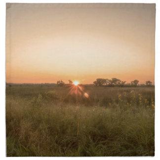 Sundown Napkin