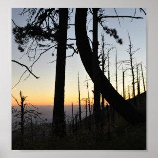 Sundown Silhouette Poster