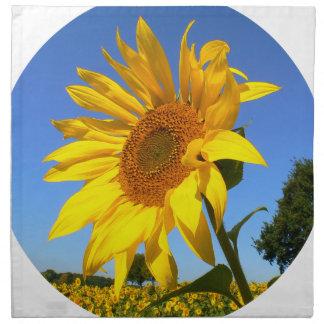 Sunflower 01.1rd, Field of Sunflowers Napkin