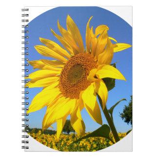 Sunflower 01.1rd, Field of Sunflowers Notebooks