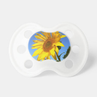 Sunflower 01.1rd, Field of Sunflowers Pacifier
