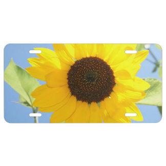 sunflower-11 license plate