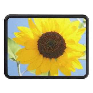 sunflower-11 tow hitch cover