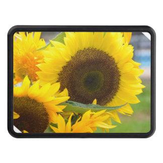 sunflower-132.jpg hitch covers
