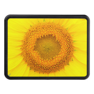 "Sunflower 2"" Hitch Cover"