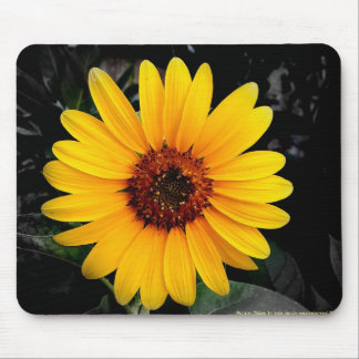 Sunflower 2 mouse mats