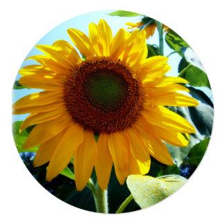 "Sunflower 5.25"" Square Invitation Card"