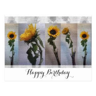Sunflower Artistic Elegant Nostalgic Trendy Postcard