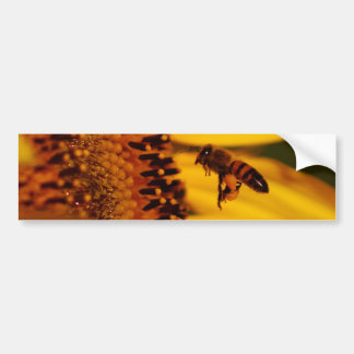 Sunflower, bee and meaning car bumper sticker