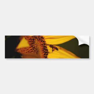 Sunflower, bee and meaning bumper sticker