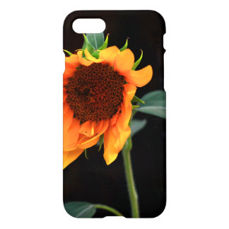 Sunflower bloom iPhone 7 case
