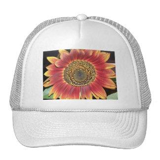 Sunflower Blossom Baseball Hat