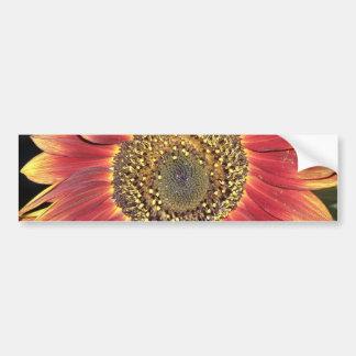 Sunflower Blossom Bumper Sticker