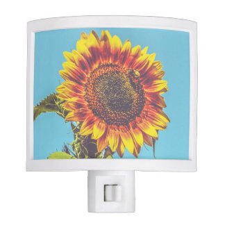 Sunflower & Bumble Bee Flowers Night Light