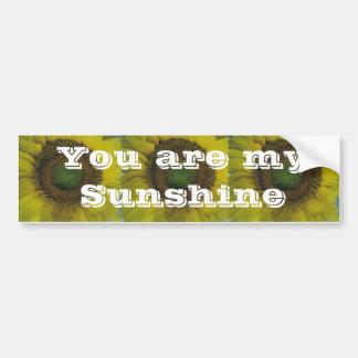 sunflower,bumper sticker car bumper sticker