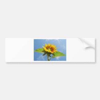 sunflower bumper stickers
