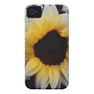 Sunflower Burst iPhone 4 Cover