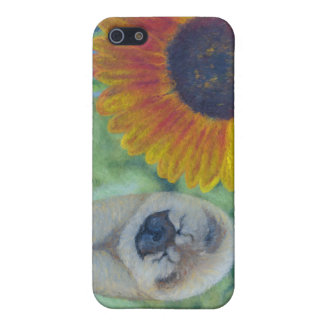 Sunflower Chow Chow iPhone 5/5S Cover