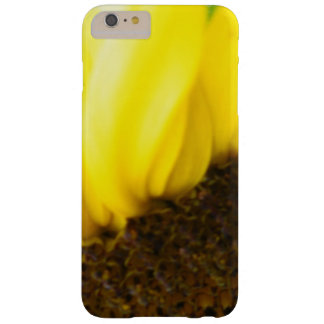 Sunflower Close Up 175 Barely There iPhone 6 Plus Case