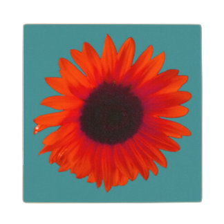 Sunflower Coaster (Wooden) (Orange and Teal) Wood Coaster
