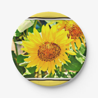 "Sunflower Collection 7"" Paper Plates"