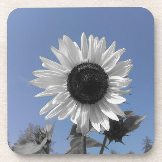 Sunflower Color Splash Beverage Coaster