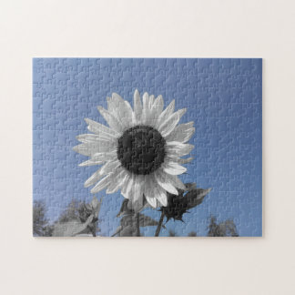 Sunflower Color Splash Puzzle