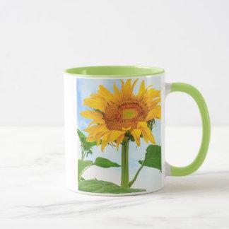 Sunflower, community garden, Moses Lake, WA, USA Mug