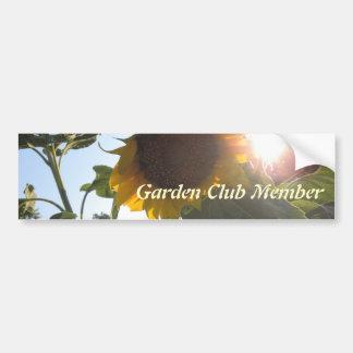 Sunflower Down Bumper Sticker