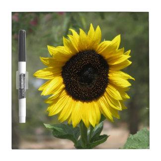 Sunflower Dry Erase Board