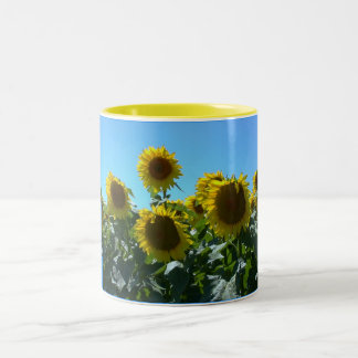 Sunflower Fest--Mug Two-Tone Coffee Mug