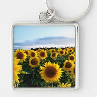 Sunflower Field Keychain