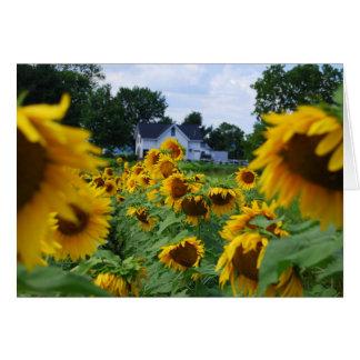 Sunflower Field with Farmhouse Card