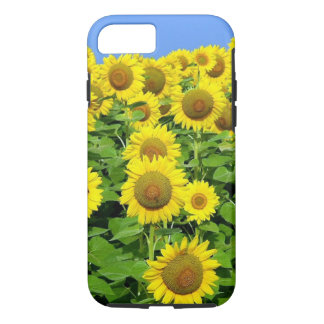 Sunflower Fields iPhone 8/7 Case